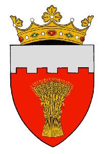 Consiliul Raional Soroca